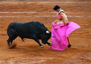 Photo of Bullfighter