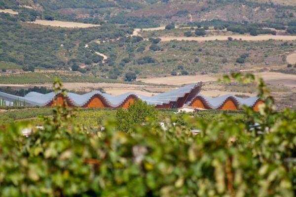 Ysios Winery