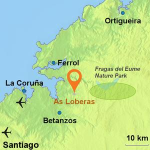 As Lobeiras
